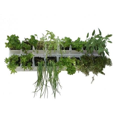 Orto verticale vinea green wall for Giardino verticale balcone