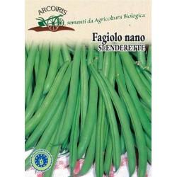 Fagiolino nano Slenderette