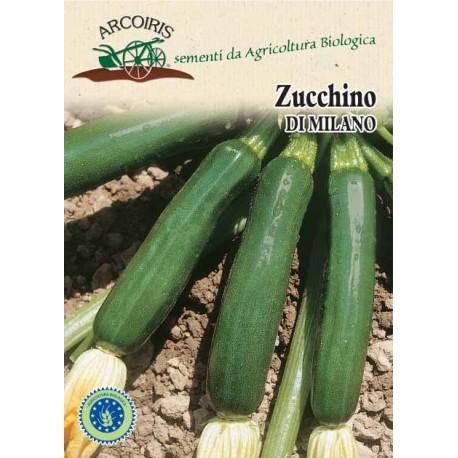 Zucchino di Milano