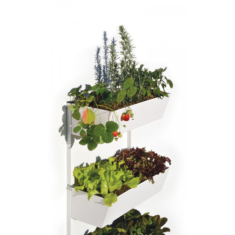 Vertical Kitchen Garden Kitchen Garden