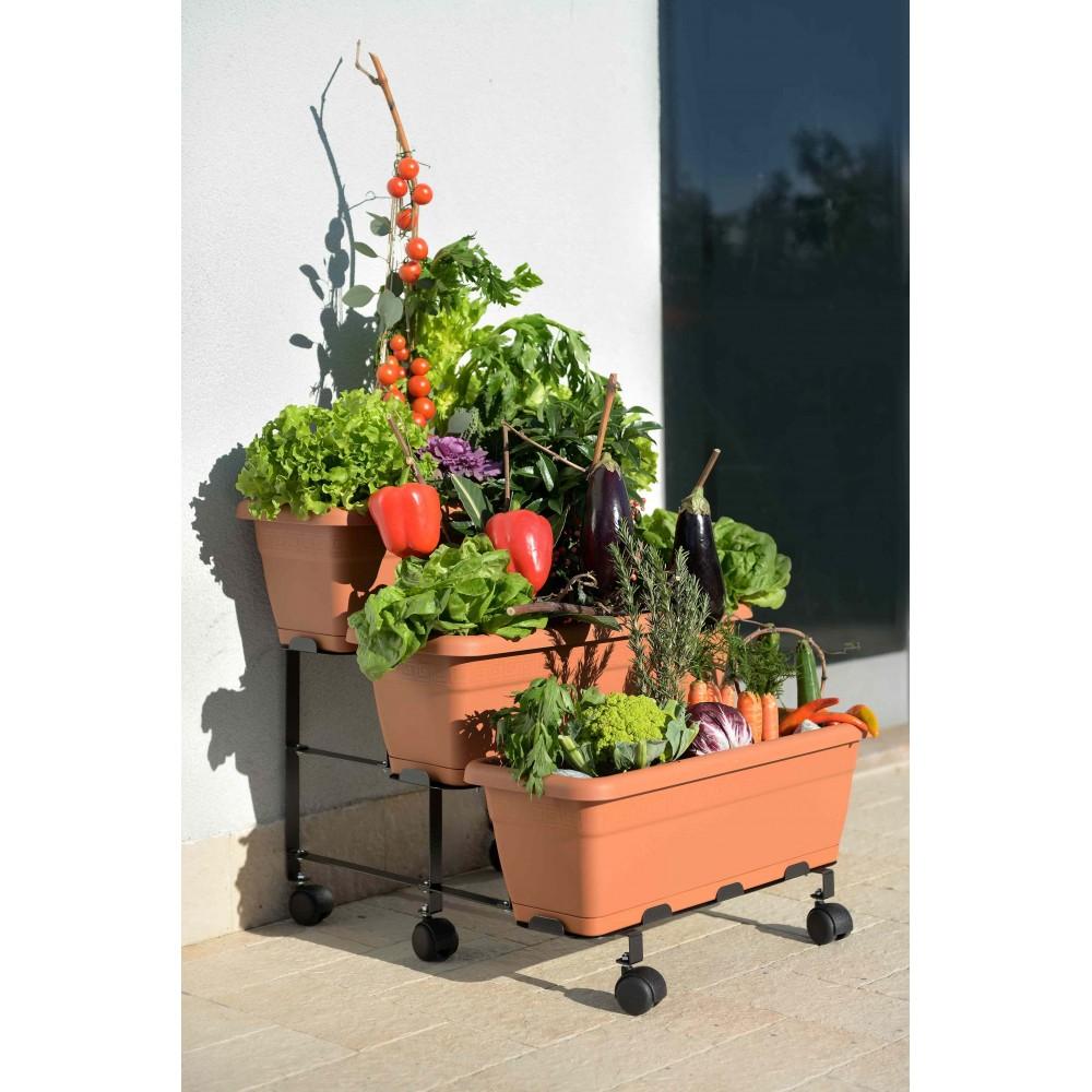 vasi per orto sul terrazzo - 28 images - l orto sul balcone terra ...