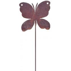 Farfalla segna piante