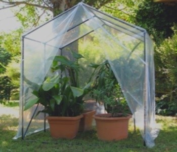 Steel greenhouses